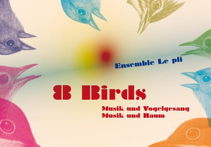 8birds_kev_v_1